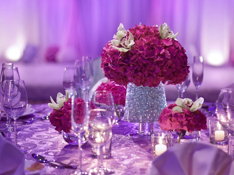 Wedding venue in tsim sha tsui wedding hotel in kowloon royal next junglespirit Image collections